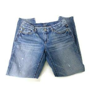 Ann Taylor Loft Lean Boyfriend Jeans 27/4